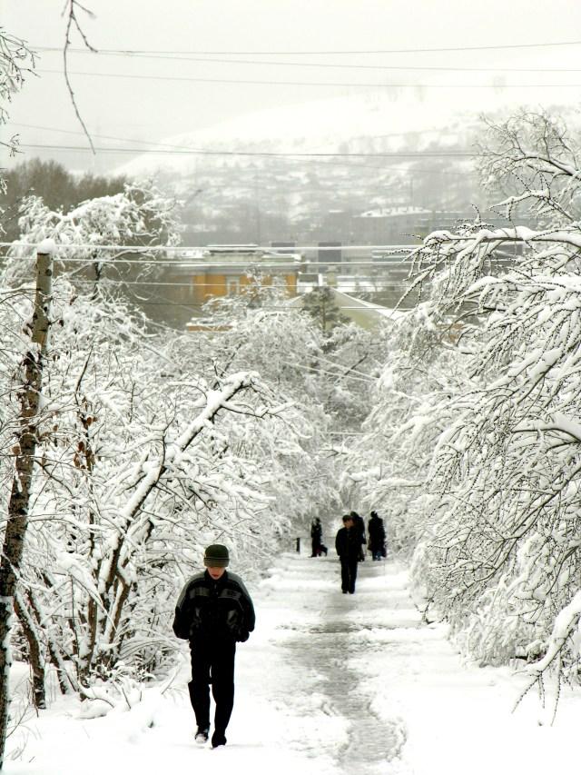 Winter scene in Chita
