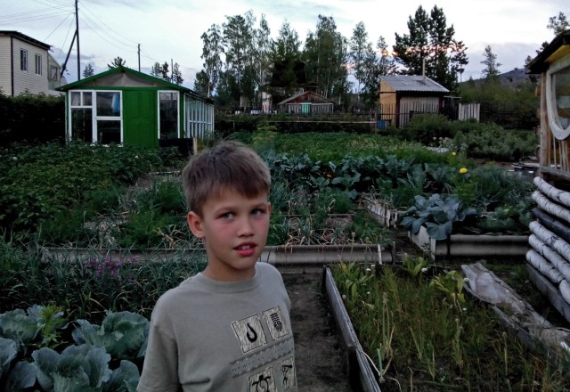 boy in a large vegetable garden