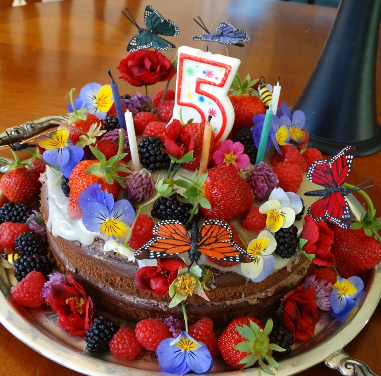 Healthy Birthday Cake Recipe With Milk Thistle Rose Hips Gfcfsf