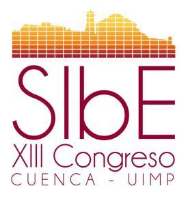 Autor: José Luis Vieco Pérez