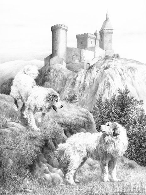 PYRENEAN MOUNTAIN DOG Great Pyrenees fine art dog print by Mike Sibley