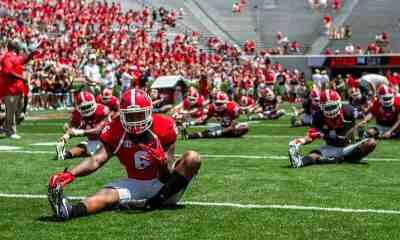 Georgia Bulldogs 2017