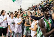 Green Basket Palermo - Piombino