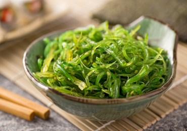 """Non solo sushi. Le alghe che curano e la nostra alga siciliana: il """"mauro"""""""