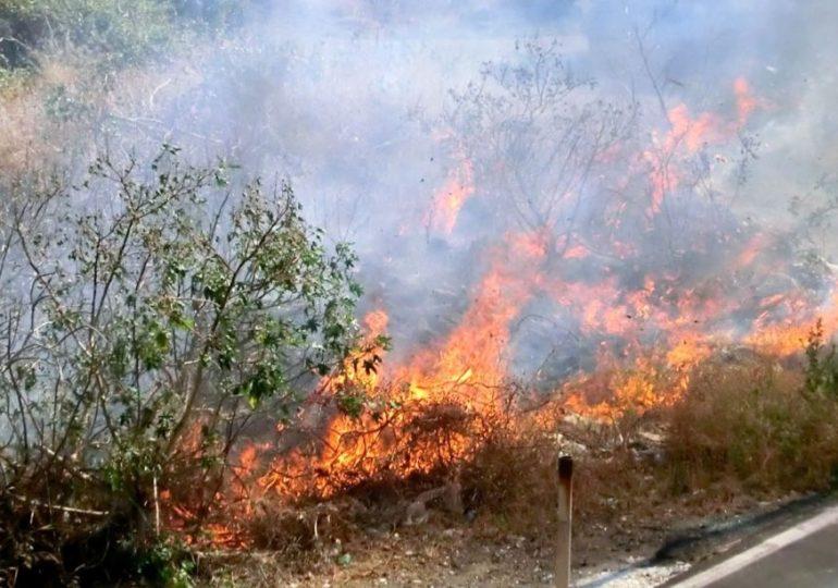 La Sicilia in fiamme, non si spengono neanche le polemiche