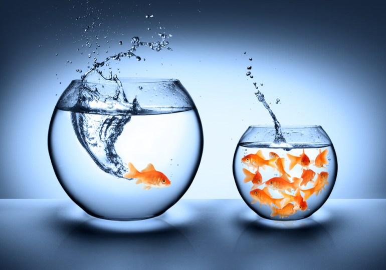 Emergenza sanitaria e management aziendale. Essere reattivi oggi e proattivi domani