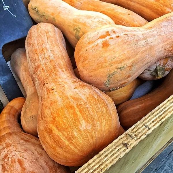 En forma de pera y naranja: es el violín de calabaza