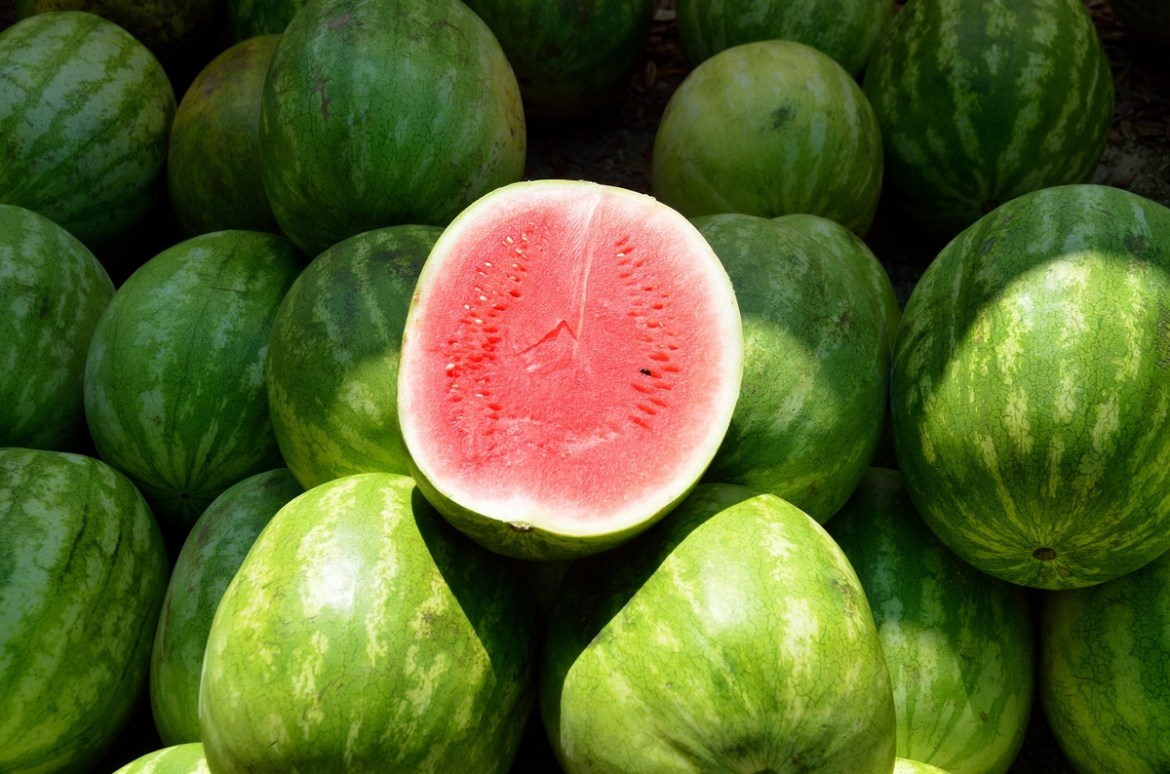 Watermelon, season in July