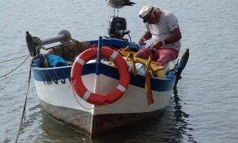 #Siracusa. Il Comune partecipa all'European Union Fishing Network