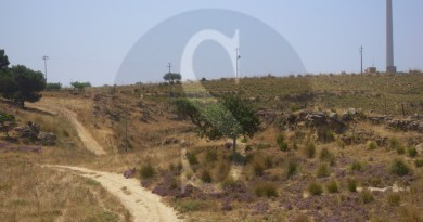 #Butera. Parco eolico, segnalato danno erariale per 3 milioni