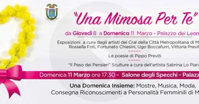 """Cultura. Fino all'11 marzo la terza edizione di """"Una mimosa per te"""" al Palazzo dei Leoni"""
