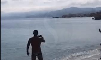 Cronaca. Messina, squalo di piccole dimensioni avvistato al Pilone VIDEO
