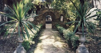 Palermo, l'Orto botanico riapre i cancelli: sconti e sicurezza al top per combattere il coronavirus