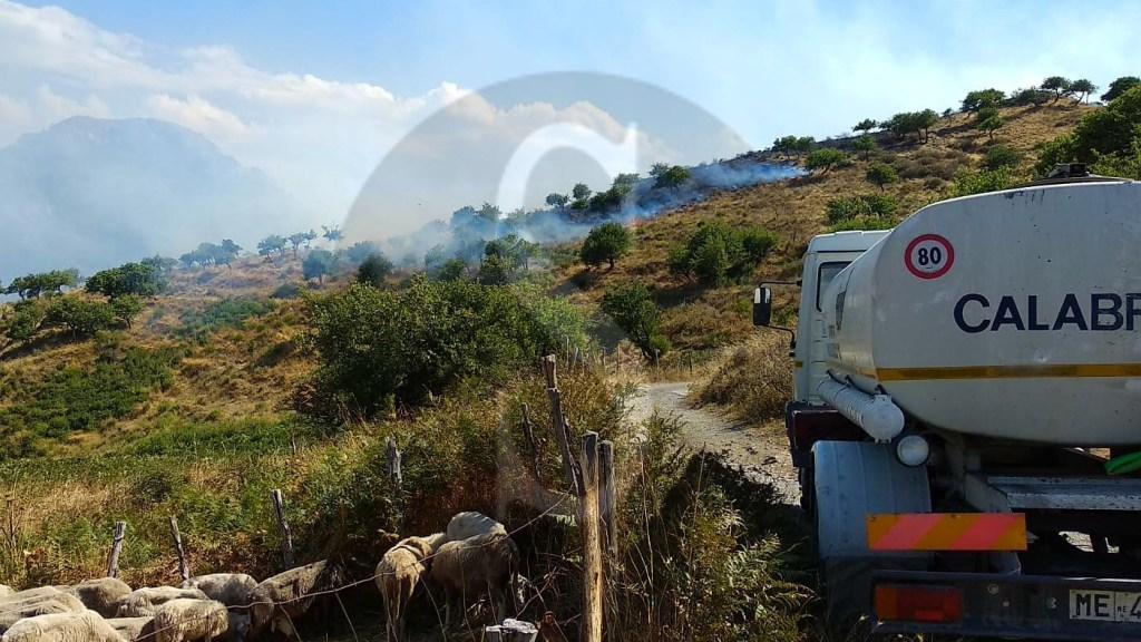 Cronaca. Incendi boschivi, il fuoco divampa a Mongiuffi Melia