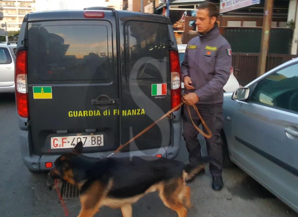 Cronaca. Messina, la Guardia di Finanza smantella organizzazione dedita al traffico di sostanze stupefacenti