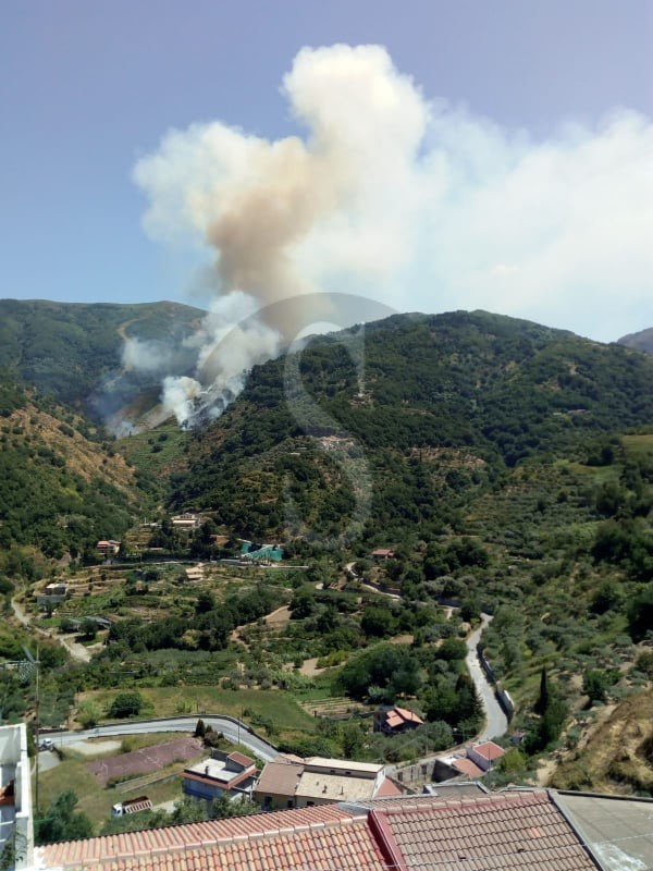 Vasto incendio tra le zone di Castroreale e Barcellona Pozzo di Gotto