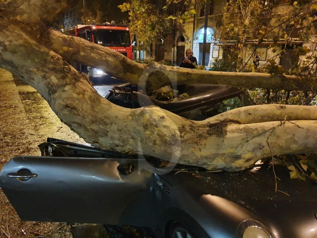 Messina, auto schiacciata da un albero in via Garibaldi: donna trasportata in ospedale in codice rosso