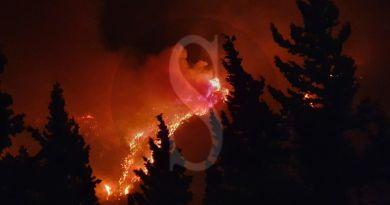 Emergenza incendi a Messina: una notte d'inferno dalle colline al mare
