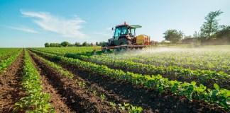 agricoltori siciliani