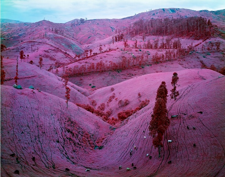 Beautiful Fall Wallpapers Photos Stunning Pink Landscapes Of The Deadly War Torn