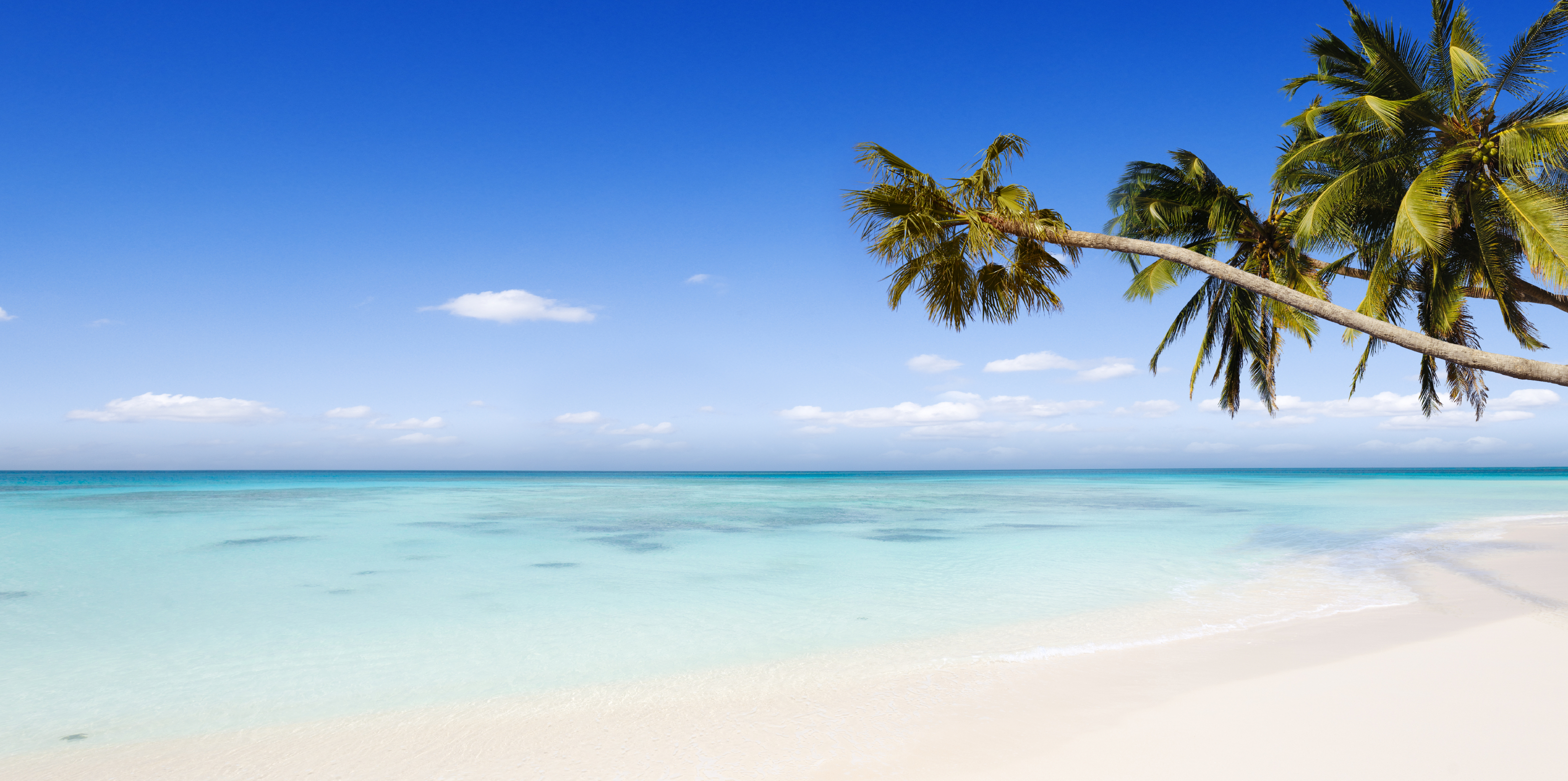 Compensation Claims For Holidays In The Dominican Republic Sickholiday Com