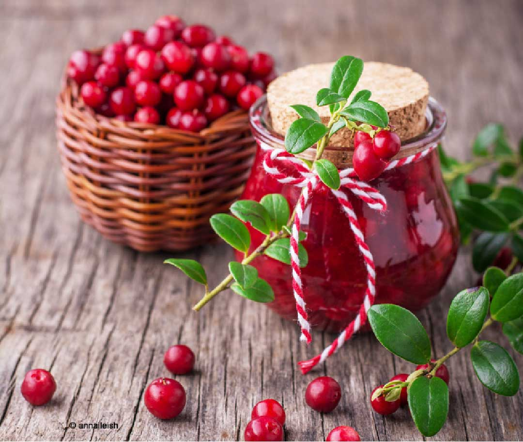 cranberry salsa powerbeere mit vitamin c viele rezepte. Black Bedroom Furniture Sets. Home Design Ideas