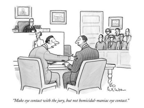 lawyer client