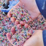 Child's hand playing in multicoloured rice during an occupational therapy in Toronto session