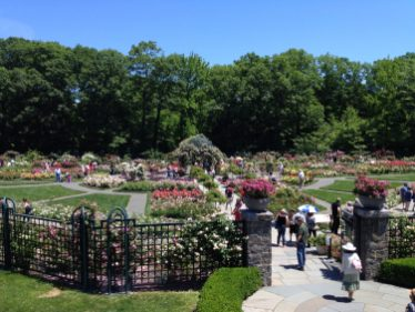 Rockefeller Rose Garden