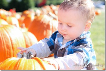 pumpkin-patch-baby-5234