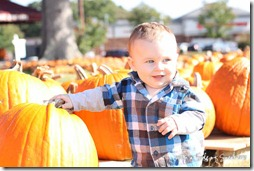 pumpkin-patch-baby-5238