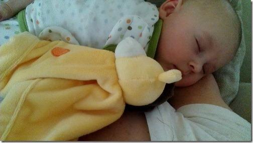 sleeping baby snuggles