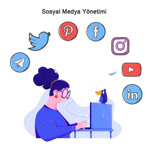 Sosyal Medya da İçerik Paylaşımı