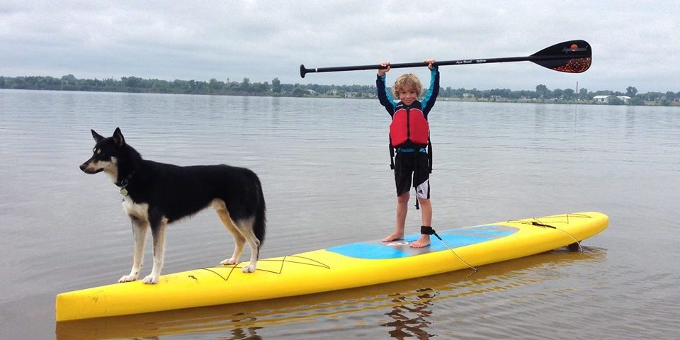 unique dog friendly activities