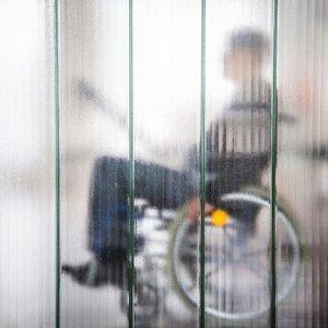 foto disabile in carrozzina
