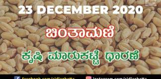 Chintamani Agriculture Market Daily Vegetables Fruits Products Farming Rates Farmer Prices