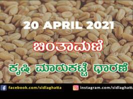 Chintamani Agriculture APMC Farmers Market april 20