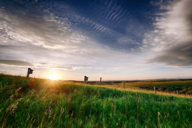 Summer sunrise over the Southern Alberta farmland with wire fence and wooden fenceposts, Alberta landscape.