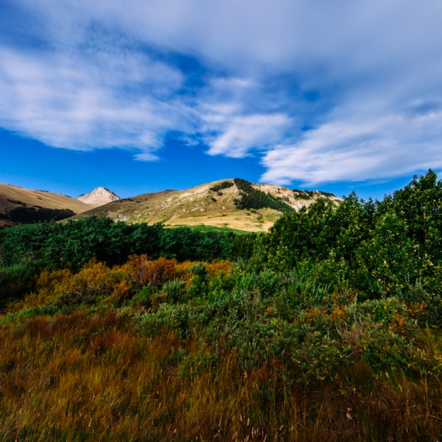 The Canadian Rockies between Pincher Creek and Waterton, with a side road during late summer with rich, fall colours, Alberta landscape. Copy space horizontal.