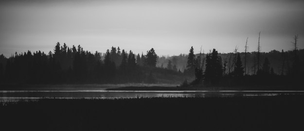 Foggy autumn sunrise, black and white Alberta landscapes.