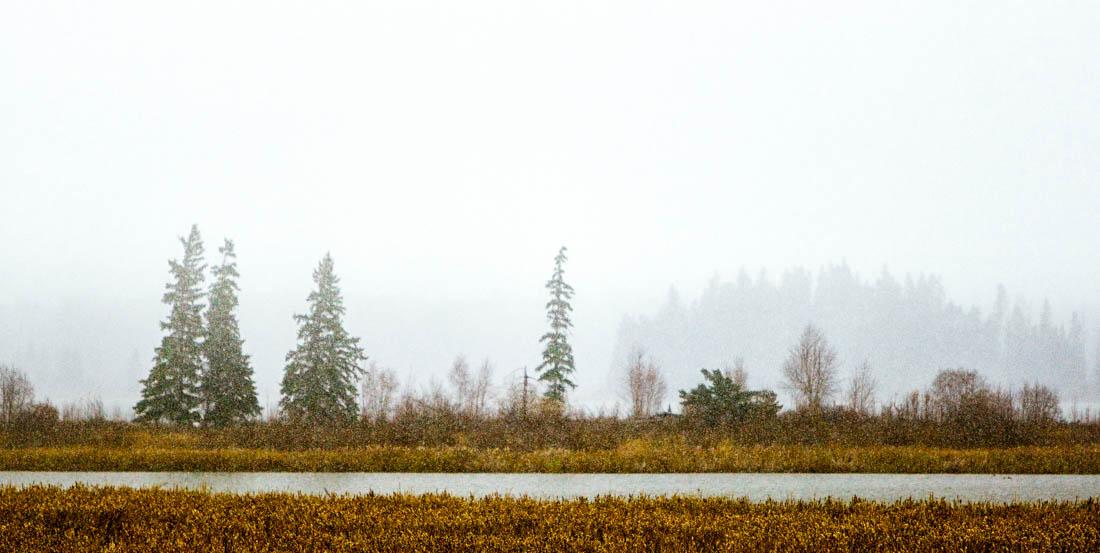 A mid-autumn snow storm at Elk Island National Park, Astotin Lake.