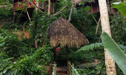 Excursión Dominican Tree House, Zip Line, Playa El Valle – Domingo 4 de Marzo 2018