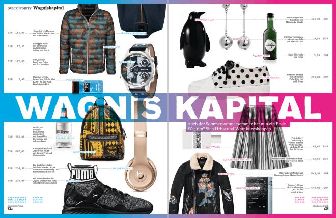 Wagnis-Kapital 5/2016 (für Business Punk)