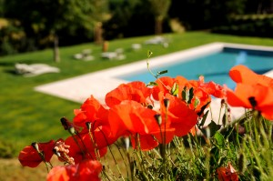 boutique_hotel_tuscany_sienahouse_the_garden (6)