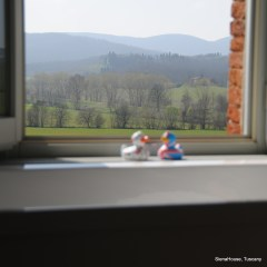Image of two rubber ducks perched on a window sill in a view of rolling hills with Phillippe Starcke bath tub in the fore ground.