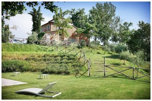 Image of a tuscan farm house sitting on a hill with a pool lower down in a lawn area showing the rosemary surrounding the pool and the trees in leaf with one large cypress tree at life and one white sunlounger at below left foreground with blue skies summer in tuscany