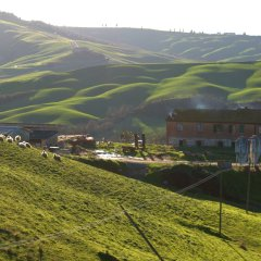 The Magical Crete Senesi