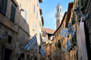 Image showing yellow ochre burnt umber and burnt Siena streets of the medieval city of Siena (Sienna) on the morning of the palio of August 2017 within the contrada Onda the torre di mangia is visible at top right under blue skies this is the winning contrada blue and white flags with dolphin