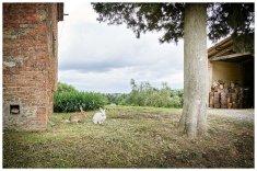 Siena_House_085
