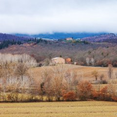 Tuscany in Winter, by Dumitru Brinzan